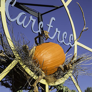 Carefree Pumpkin 300x300